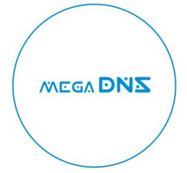 megaDNSseite1b